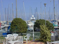 The garden at the yacht club - yes it has been said that there is more interest than appropriate in gardening and window boxes than yacht racing - burn!