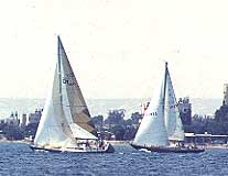 winter sailing in Larnaca bay cyprus.JPG (10205 bytes)